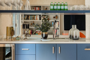 elms-interior-design-dwight-street-residence-14