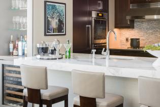 elms-interior-design-back-bay-residence-06