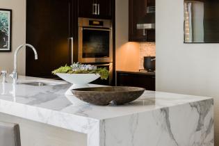 elms-interior-design-back-bay-residence-07