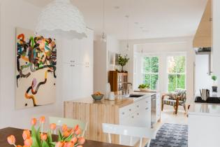 elms-interior-design-this-old-house-cambridge-03